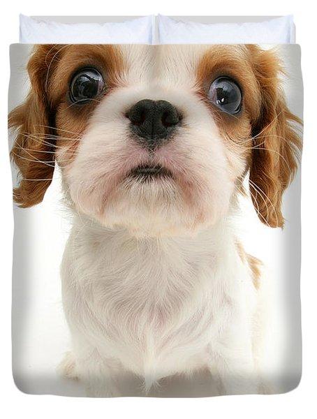 Puppy Duvet Cover by Jane Burton