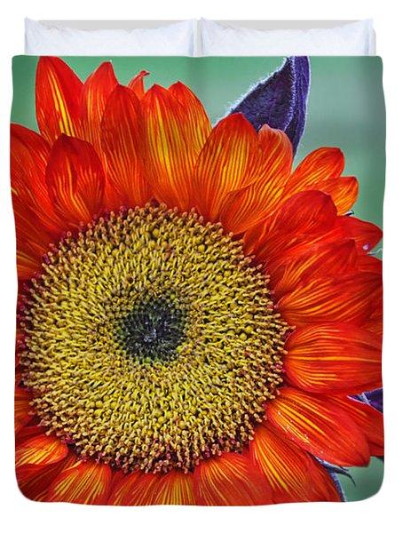 Red Sunflower  Duvet Cover by Saija  Lehtonen