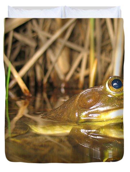 Resting Bullfrog Duvet Cover by Ted Kinsman