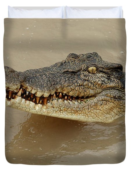 Salt Water Crocodile 3 Duvet Cover by Bob Christopher