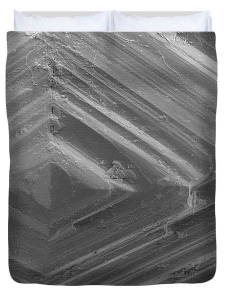 Sem Of A Diamond Duvet Cover by Ted Kinsman