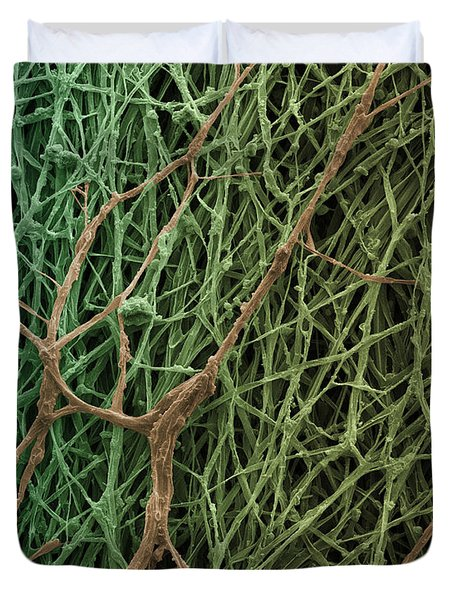 Sem Of Mycelium On Mushrooms Duvet Cover by Ted Kinsman