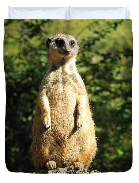 Duvet Cover featuring the photograph Sentinel Meerkat by Carla Parris
