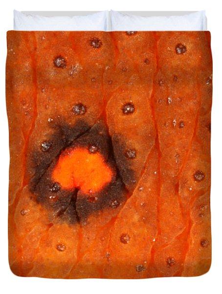 Skin Of Eastern Newt Duvet Cover by Ted Kinsman