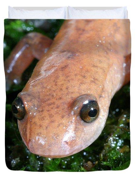 Spring Salamander Duvet Cover by Ted Kinsman