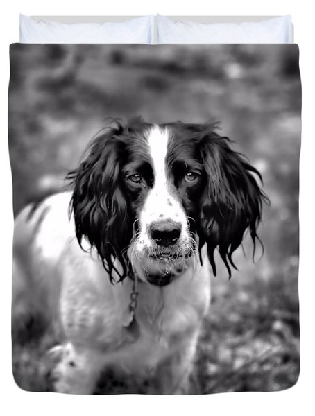Springer Spaniel Duvet Cover by Marlo Horne