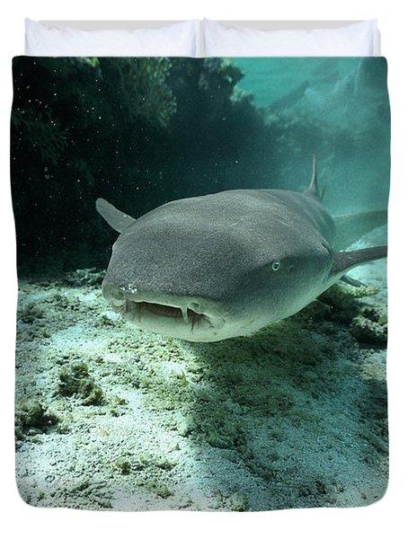 Tawny Nurse Shark Nebrius Ferrugineus Duvet Cover by Mike Parry