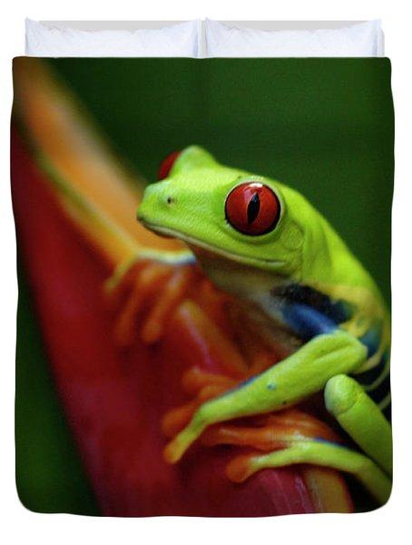 Tree Frog 19 Duvet Cover by Bob Christopher