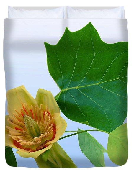 Tulip Poplar Tulip Duvet Cover by Kristin Elmquist