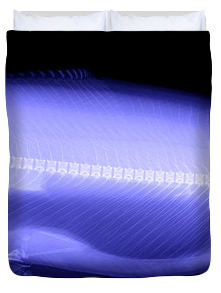 X-ray Of A Trout Duvet Cover by Ted Kinsman