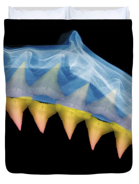 X-ray Of Shark Jaws Duvet Cover by Ted Kinsman