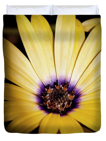 Yellow Daisy Duvet Cover by David Patterson