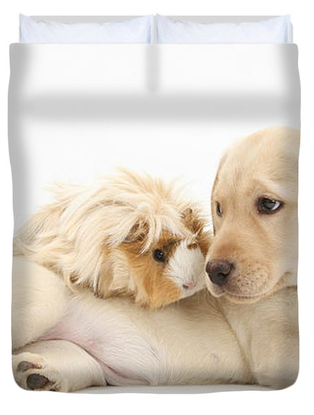 Puppy And Guinea Pig Duvet Cover by Mark Taylor
