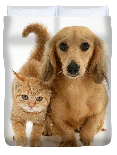 Kitten And Puppy Duvet Cover by Jane Burton