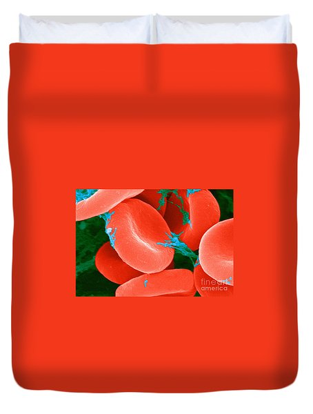 Red Blood Cells Sem Duvet Cover