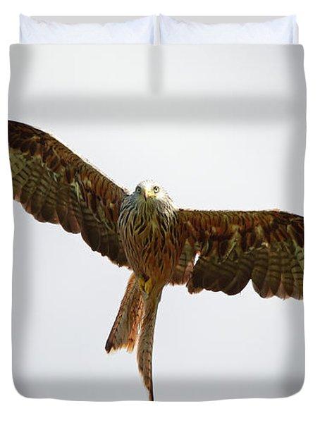 Red Kite In Flight Duvet Cover