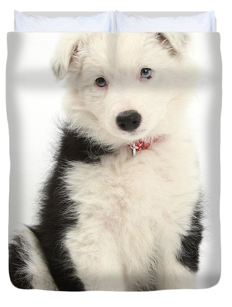 Border Collie Puppy Duvet Cover by Mark Taylor