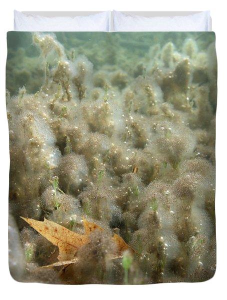 Algae In A Frozen Pond Duvet Cover by Ted Kinsman