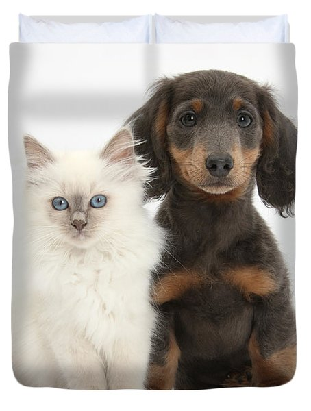 Blue-point Kitten & Dachshund Duvet Cover by Mark Taylor