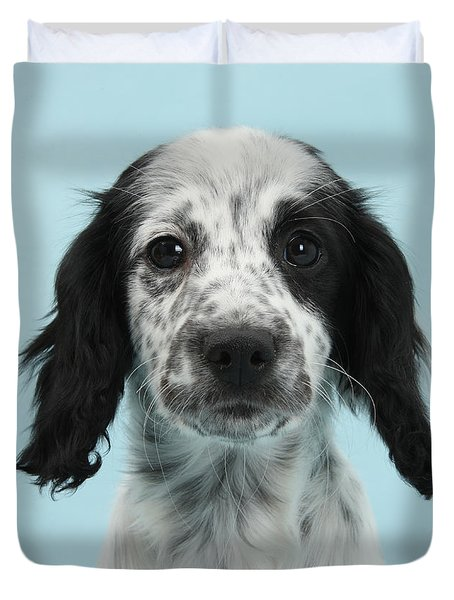 Border Collie X Cocker Spaniel Puppy Duvet Cover by Mark Taylor