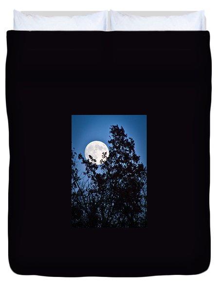 Moon Night Duvet Cover by Jiayin Ma
