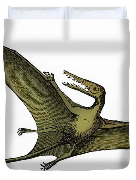 Pterodactyl Extinct Flying Reptile Duvet Cover by Science Source