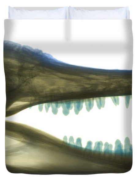 X-ray Of American Alligator Duvet Cover by Ted Kinsman