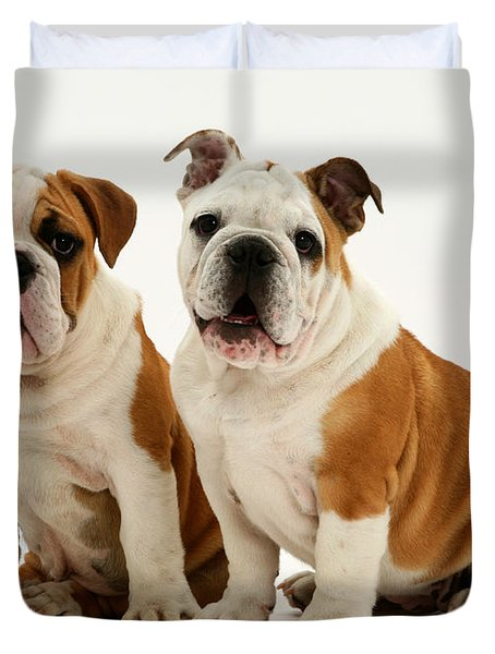 Bulldog Pups Duvet Cover by Jane Burton
