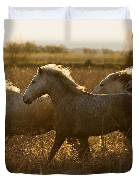 Camargue Horse Equus Caballus Group Duvet Cover by Konrad Wothe