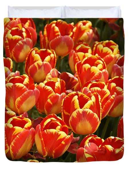 Flaming Tulips Duvet Cover by Michele Burgess