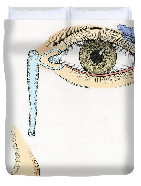 Illustration Of Tear Duct Duvet Cover by Science Source