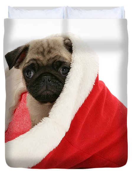 Pug Puppy Duvet Cover by Jane Burton