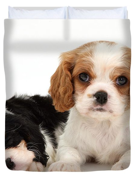 Puppies Duvet Cover by Jane Burton