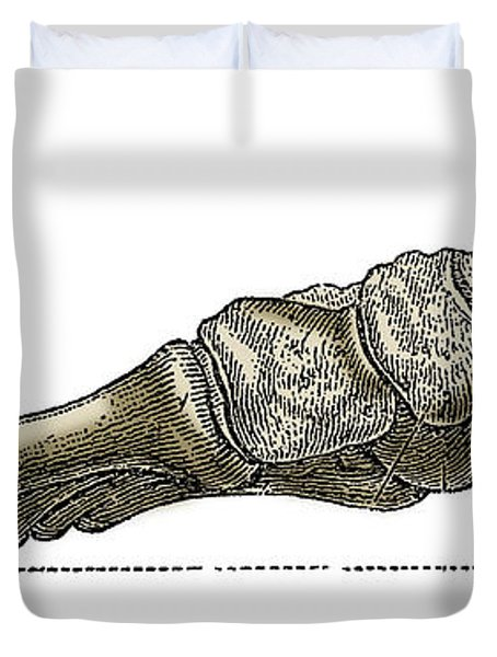 Right Foot Duvet Cover by Science Source