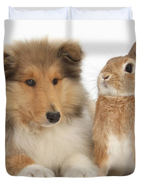 Rough Collie Pup With Rabbit Duvet Cover by Mark Taylor