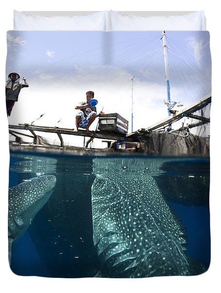 Whale Shark Feeding Under Fishing Duvet Cover by Steve Jones