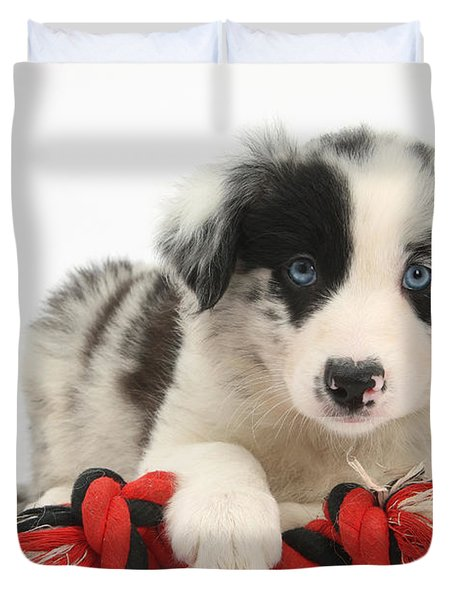 Border Collie Pup Duvet Cover by Mark Taylor
