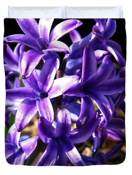 Hyacinth Named Peter Stuyvesant Duvet Cover by J McCombie