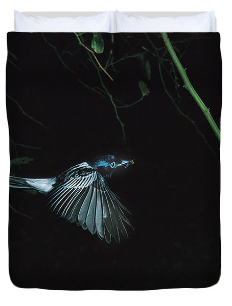 Madagascar Paradise Flycatcher Duvet Cover by Cyril Ruoso