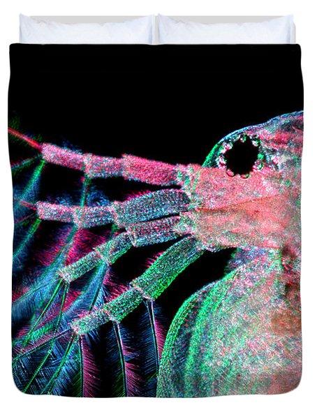 Water Flea Daphnia Magna Duvet Cover by Ted Kinsman