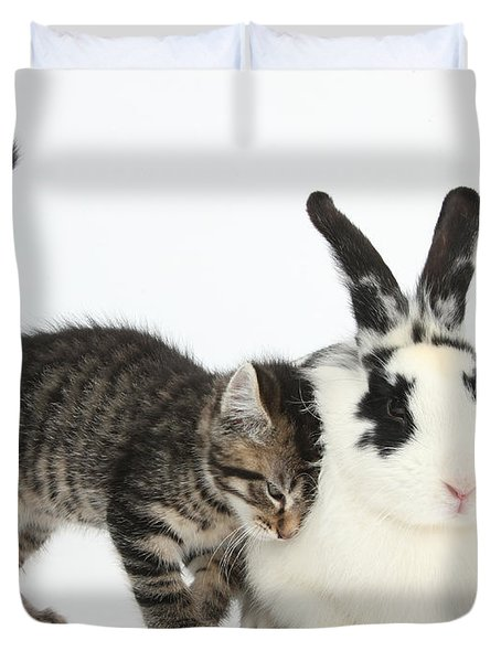 Kitten And Rabbit Duvet Cover by Mark Taylor