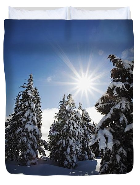Oregon Cascades, Oregon, United States Duvet Cover by Craig Tuttle