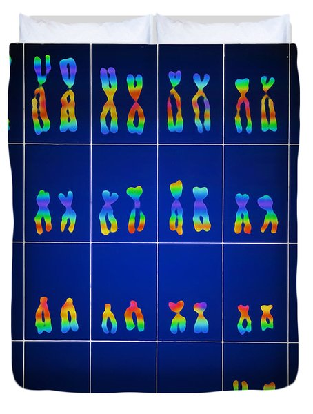 Male Karyotype Duvet Cover by Omikron