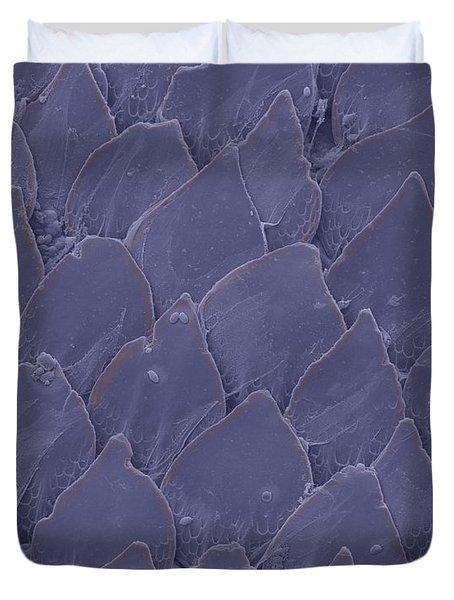 Shark Skin, Sem Duvet Cover by Ted Kinsman
