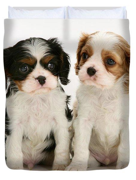 Puppies Duvet Cover by Jane Burton