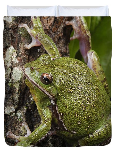 A Barking Treefrog Sits On The Crotch Duvet Cover by George Grall