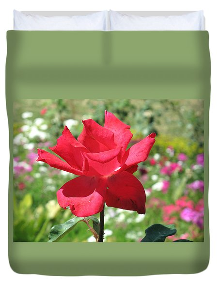 A Beautiful Red Flower Growing At Home Duvet Cover by Ashish Agarwal