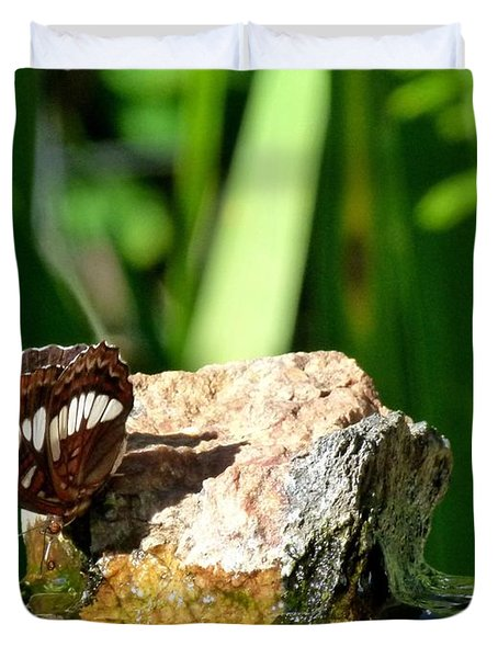 A Butterfly Enjoys A Drink Duvet Cover by Will Borden