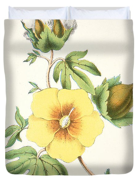 A Cotton Plant Duvet Cover by American School