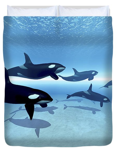 A Family Of Killer Whales Search Duvet Cover by Corey Ford